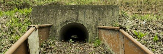 Krötentunnel