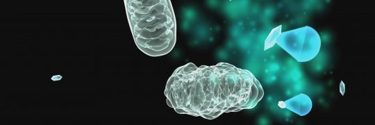 Schädigung der Mitochondrien