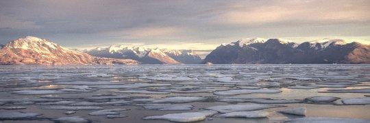 Meer mit Eisschollen vor Grönland